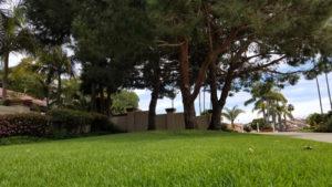 3br La Jolla Colony rental